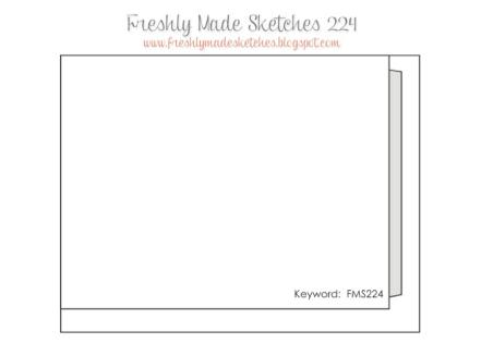 FMS224sketch