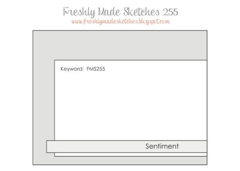 fms255sketch